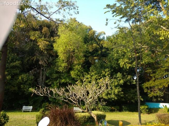 mysuru bird sanctuary @ftm (11)